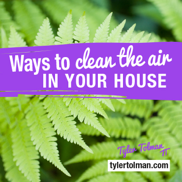 How Indoor Air Pollution Is Making You Sick